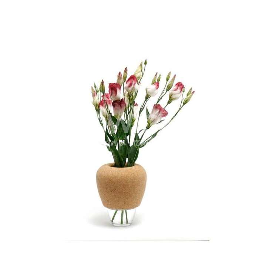 Les vases CANTINE N°15
