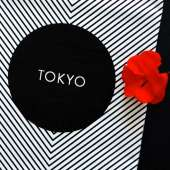 Linge de maison - Torchon à vaisselle TOKYO