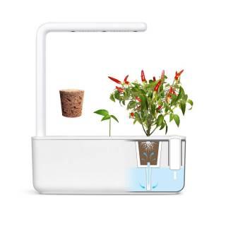 potager interieur smart garden