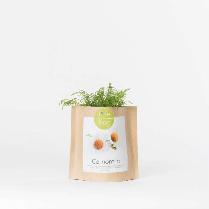 Sac de graines GROW BAG / Camomille