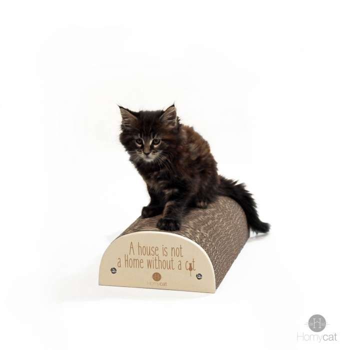 """Griffoir """"A house is not a home without a cat"""""""